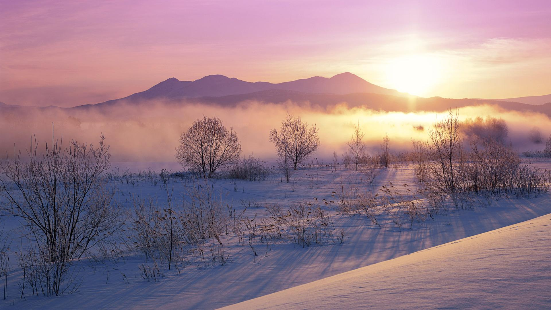 wonderful_misty_winter_japanese_morning