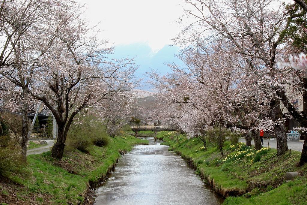 oshino_hakkai river spring