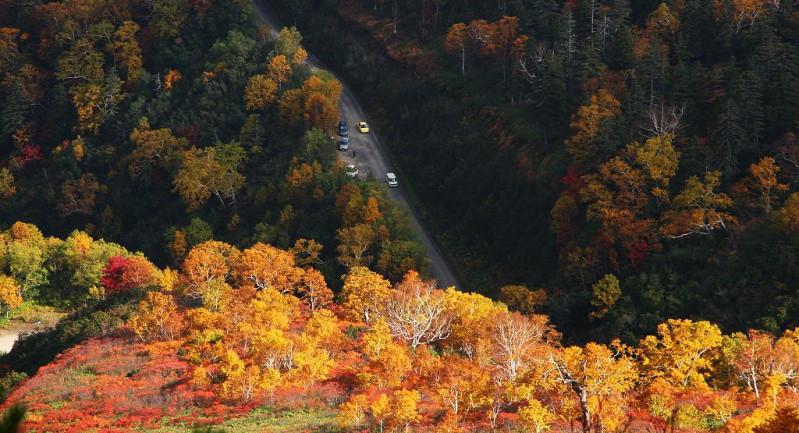 Vẻ đẹp Hokkaido