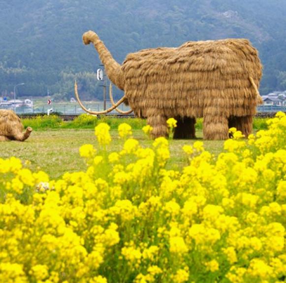 Những 'quái vật' khổng lồ bằng rơm ở Nhật Bản
