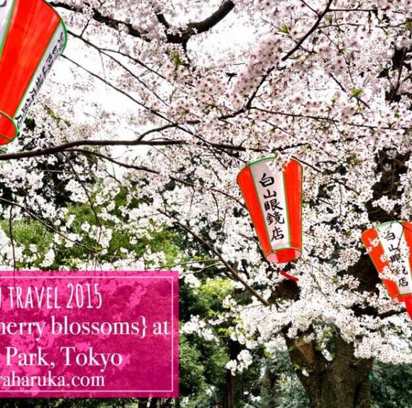 Giải đáp các thắc mắc chung cho du khách muốn đi du lịch Nhật Bản