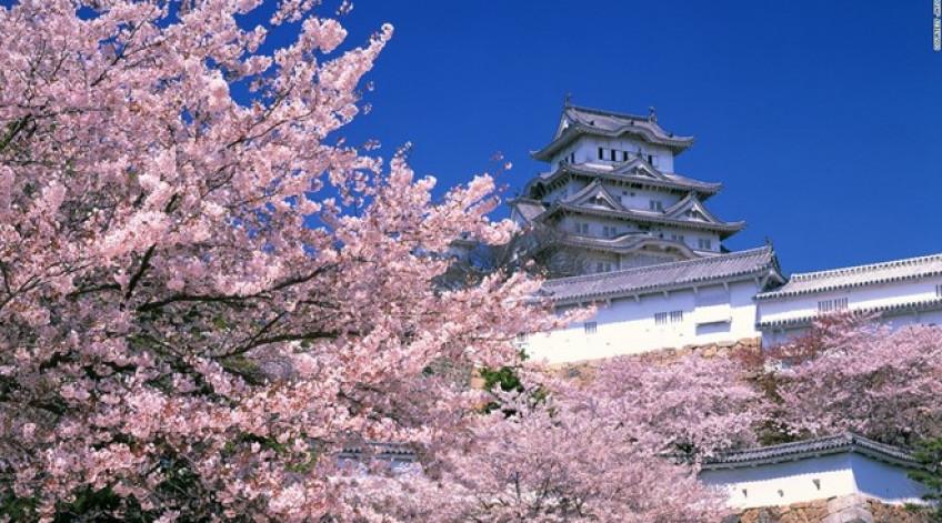 """Thường được gọi là """"lâu đài diệc trắng"""" do nước sơn màu trắng và kết cấu trông giống như một con chim đang cất cánh, Himeji gồm có 83 tòa nhà. Lâu đài được xây dựng từ thế kỷ 17 này có hệ thống phòng thủ kiên cố và từng xuất hiện trong nhiều bộ phim nổi tiếng của Nhật và Hollywood"""