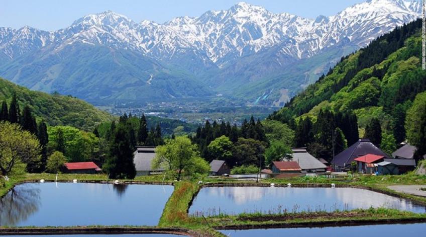 Khu vườn kiểu Nhật này có các ao, suối nhỏ, đền thờ và những khóm tre. Vườn Senganen nằm cạnh bờ biển phía bắc của Kagoshima. Du khách tới đây có thể tham quan núi lửa Sakurajima và vịnh Kagoshima. Khu vườn được xây dựng từ năm 1658 vào thời Edo.