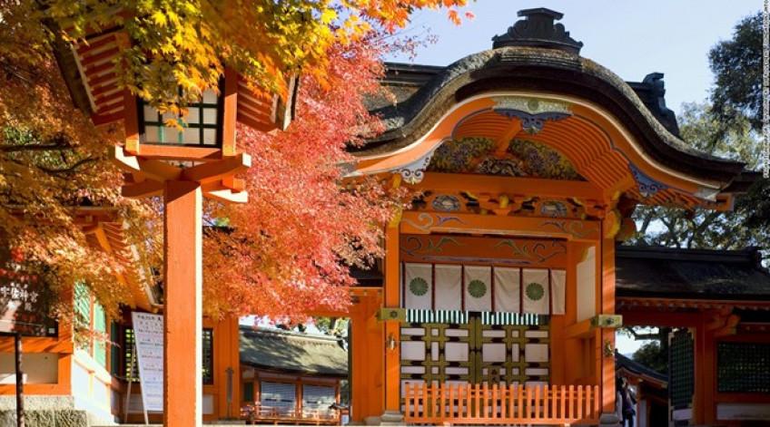 Được xây dựng vào thế kỷ 8, đền Usa là công trình quan trong nhất dành để thờ phụng Hachiman, thần cung tên và chiến tranh. Sau khi rút quẻ, du khách có thể thưởng thức món đặc sản Negiyaki (bánh kếp hành).