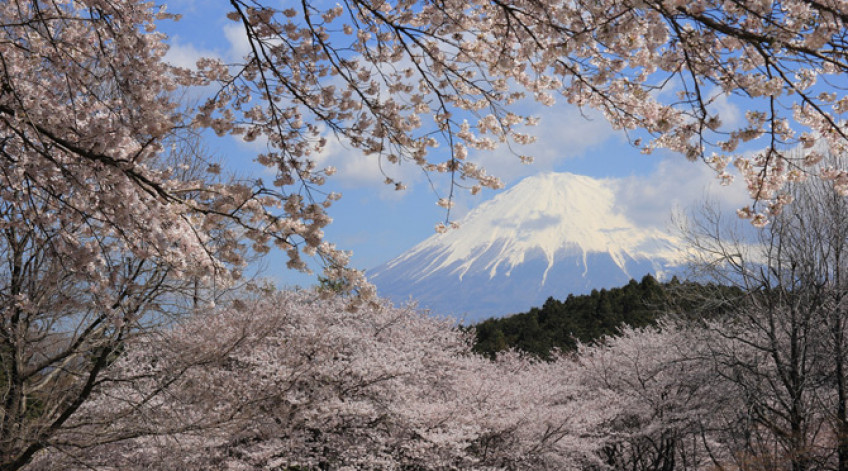 Núi Phú Sĩ trải dài trên địa phận tỉnh Shizuoka và tỉnh Yamanashi, ở phía Tây Nam Tokyo.