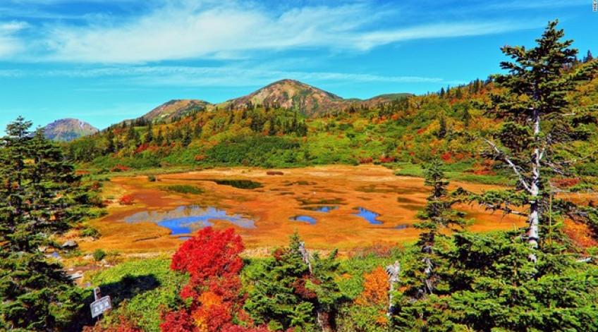 Mùa thu trên núi Hiuchi đem lại cho hồ Koya những sắc màu rực rỡ. Hồ nước nông và phủ đầy cây này thay chiếc áo màu vàng, đỏ và xanh như khu rừng bao quanh. Đây là điểm dừng chân thú vị trên đường lên đỉnh Hiuchi.