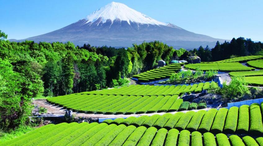 """Ngọn núi này thường là đề tài trong các bức họa và nhiếp ảnh nghệ thuật cũng như trong văn chương và âm nhạc. Đây là một trong """"Ba núi Thánh"""" của Nhật Bản (三 霊 山 Sanreizan) cùng với núi Tate và núi Haku, và cũng là một nơi đặc biệt của danh lam thắng cảnh, một di tích lịch sử, và đã được công nhận là Di sản Văn hóa Thế giới vào ngày 22 tháng 6 năm 2013"""