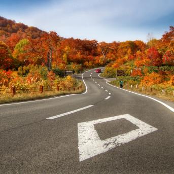 10 Địa Điểm Ngắm Mùa Thu Đẹp Nhất Xứ Sở Phù Tang (Phần 1)